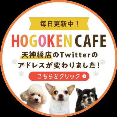 Vol.20 HOGOKEN CAFE